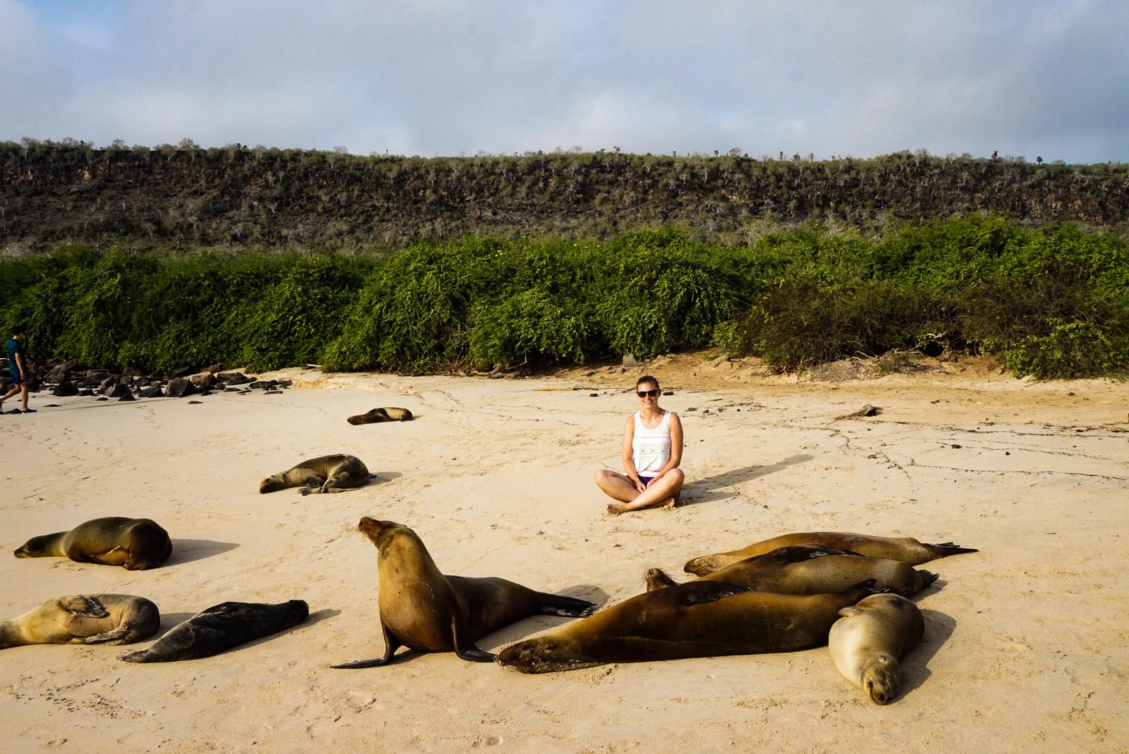 Ecuador_Galapagos_Sealion, olotravel, sharethelove, traveling alone, female travel